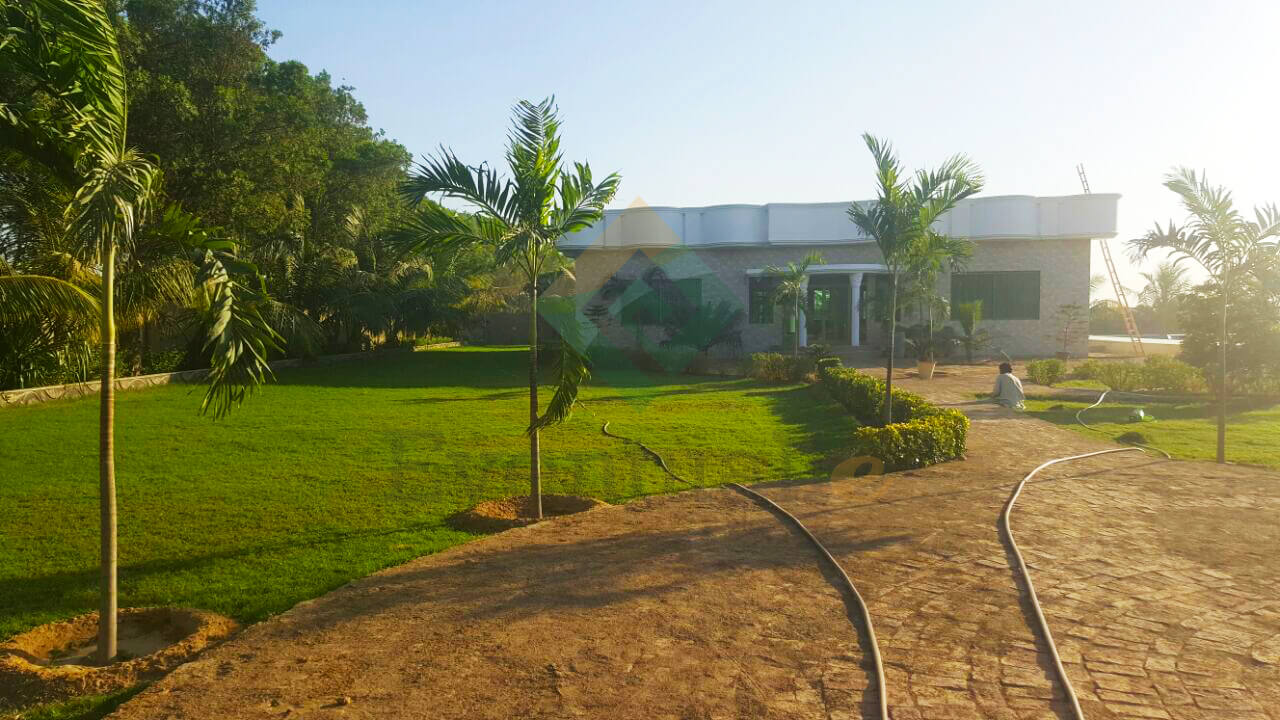 Luxurious Farm House located on the outskirts of city for Shamsi Farm House Cricket Ground  111ane
